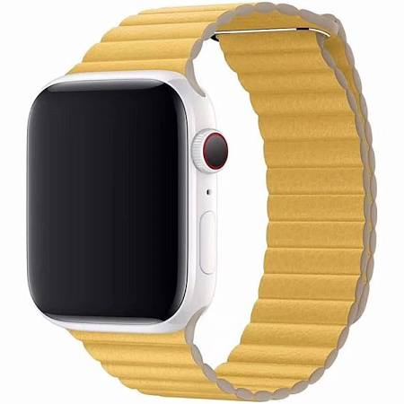 Correas Apple Watch Series 4